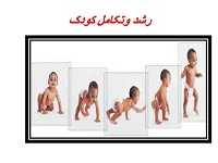 رشد و تکامل انسان