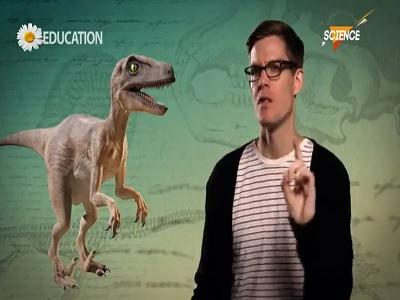 انقراض ششم
