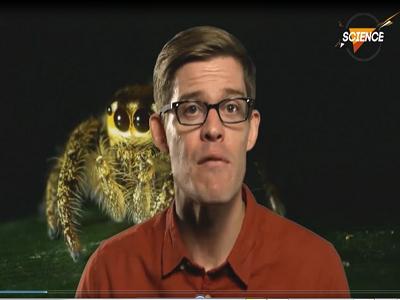 ترس از حشرات