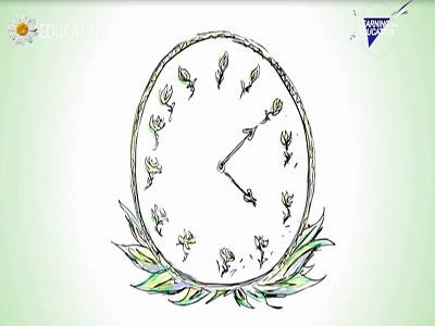 شناخت زمان در گیاهان
